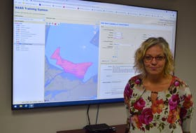 Tanya Mullally, P.E.I.'s emergency measures co-ordinator, said their technology now allows police agencies and the Emergency Measures Organization (EMO) to target specific areas of the province when it comes to issuing an alert. On Sept. 23, police were given the power to issue emergency alerts.
