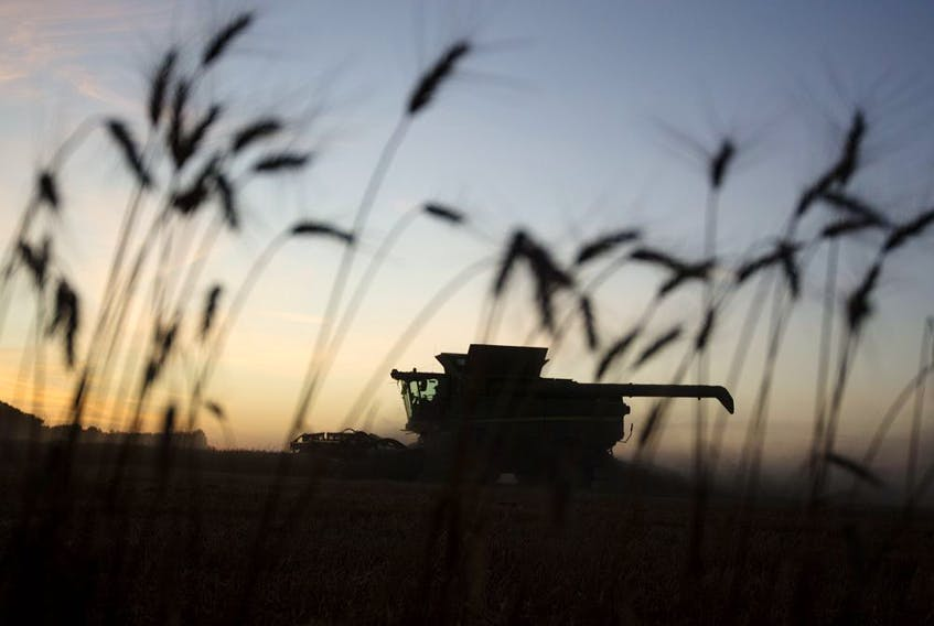 The Ottawa-based Canadian Agri-Food Policy Institute is positioning the agriculture industry as a key growth area to drive the post-pandemic recovery.
