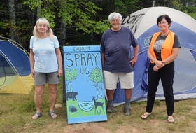 Joan Norris, Nina Newington and Janet McLeod are three of the protesters who have been occupying private land next to sites set to be sprayed with glyphosate-based herbicides.