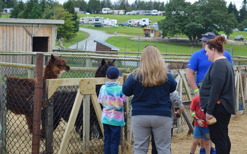 For kids, adults and familiies, the Two Rivers Wildlife Park's petting zoo offered plenty of its own live animal entertainment. — IAN NATHANSON - Ian Nathanson