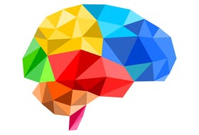 There are several ways to improve brain function and fight memory loss.