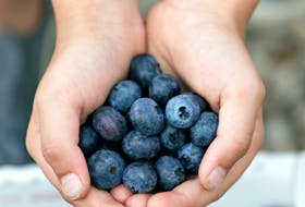 Be on the lookout for blueberries this season.