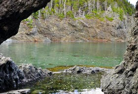 Marilyn Crotty took this photo of a sea arch in Tizzard's Harbour, N.L. at a little cove known as Beachy Cove. Tizzard's Harbour is a small community on New World Island. The community has a small population, made up of just over 50 permanent and seasonal residents.