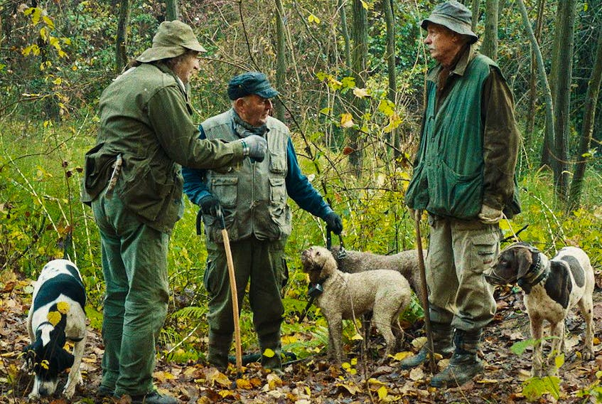 Some of the human and canine subjects of The Truffle Hunters.