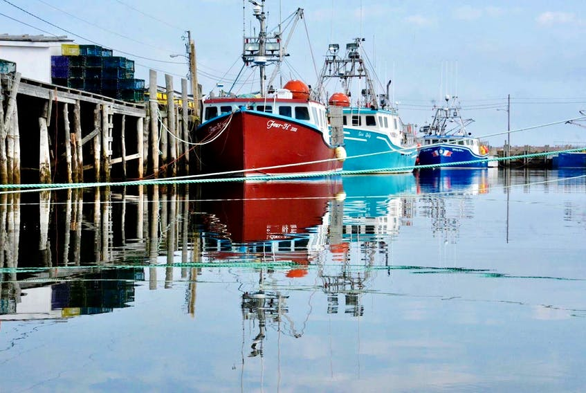 Fishing boats sit docked in Pinkney's Point, Yarmouth County. The seafood industry has had to navigate a COVID pandemic in 2020 and 2021. TINA COMEAU PHOTO