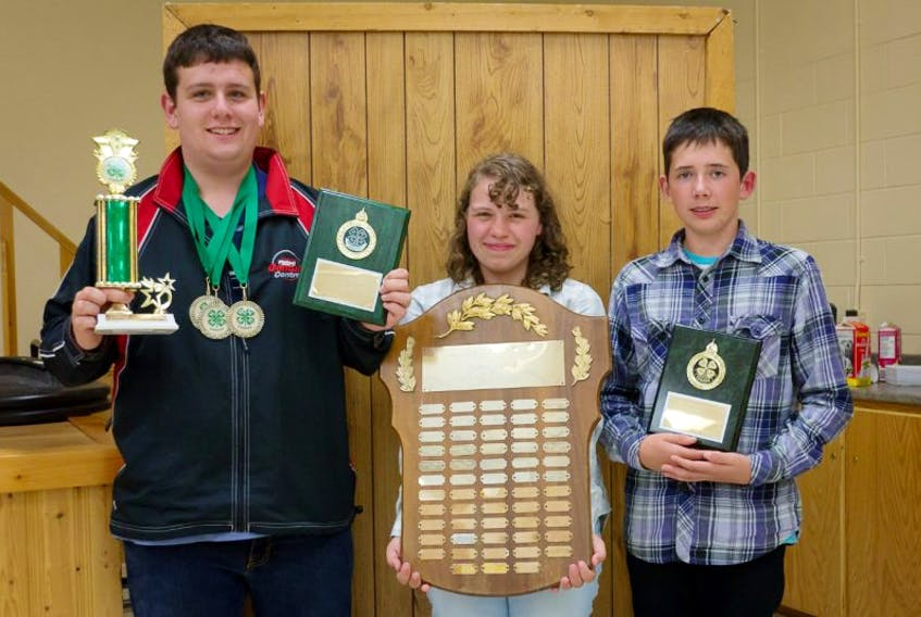 Logan Menzie, Katie Stokes and Tyler MacEachern received special recognition at the recent Kings County 4-H awards banquet.