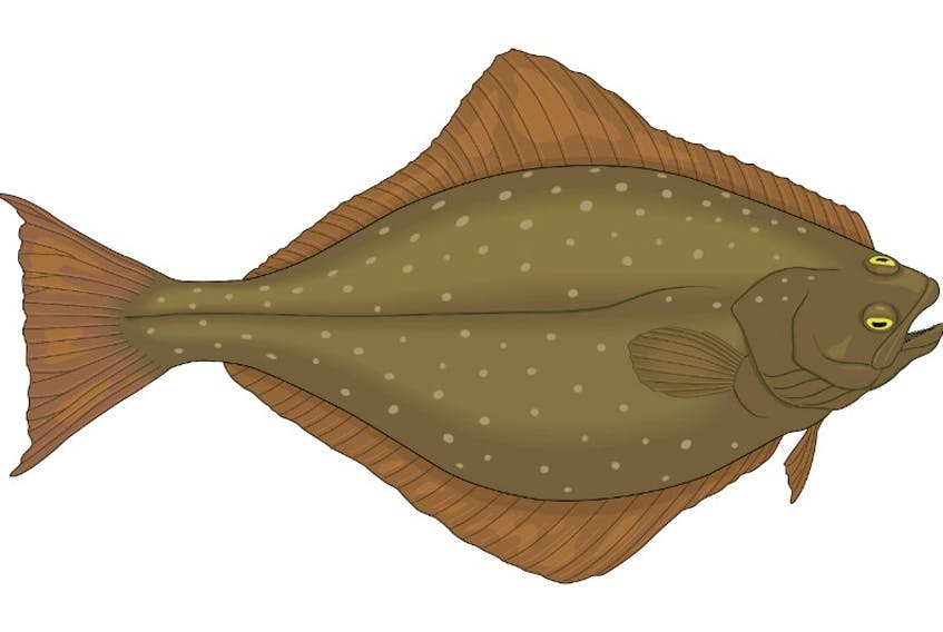 """After a week-long halibut fishing trip, Casey Morgan Henneberry, captain of the R&S Venture, returned to shore and reported to federal fishery officers catching """"20,000 or so pounds of halibut."""""""