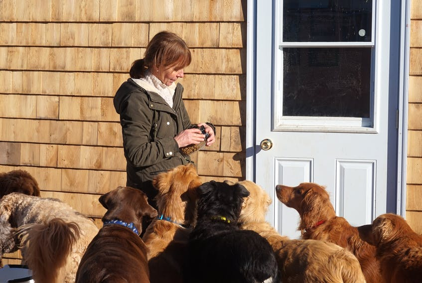 Anne Langille opened Smoochie Poochie Doggie Daycare & Boarding Services Jan. 2. The daycare is at 380 Shore Rd. in Brooklyn.