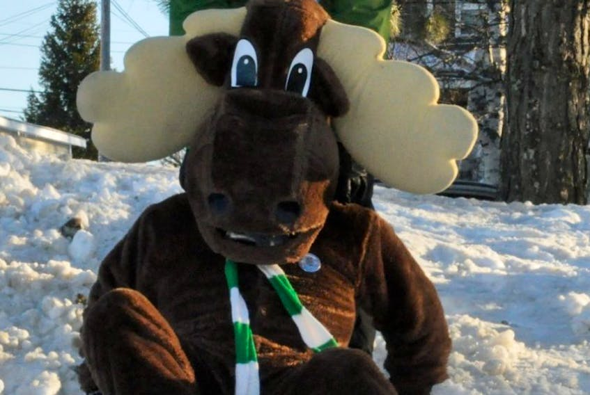 Gus the Moose, Grand Falls-Windsor Councillor Mike Browne, and th e rest of the Town and council,  are ready for some winter fun, and are hoping the rest of the comm unity are, too. Gus, sliding at  Church Road Park, one of his favourite activities, broke out his scarf f rom the former Grand Falls  Winter Carnival for this year ' s 25th anniversary of Winterlude, set for Feb. 17- 21