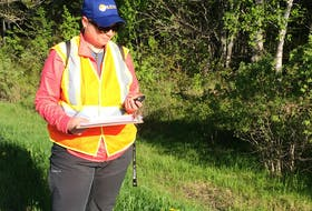 Amelia Barnes, a graduate student in environmental studies at Dalhousie University, will be working with the Nature Conservancy of Canada this summer documenting the interactions between wildlife and roadways along the Isthmus of Chignecto that connects Nova Scotia and New Brunswick.
