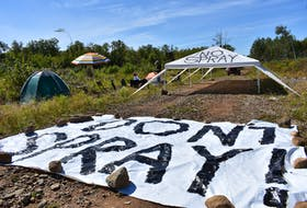 Protestors are occupying forestry land in the North Mountain community of Burlington in an attempt to prevent approved aerial herbicide spraying from taking place on 115 acres near the intersection of McNally Road and Nollett Beckwith Road.