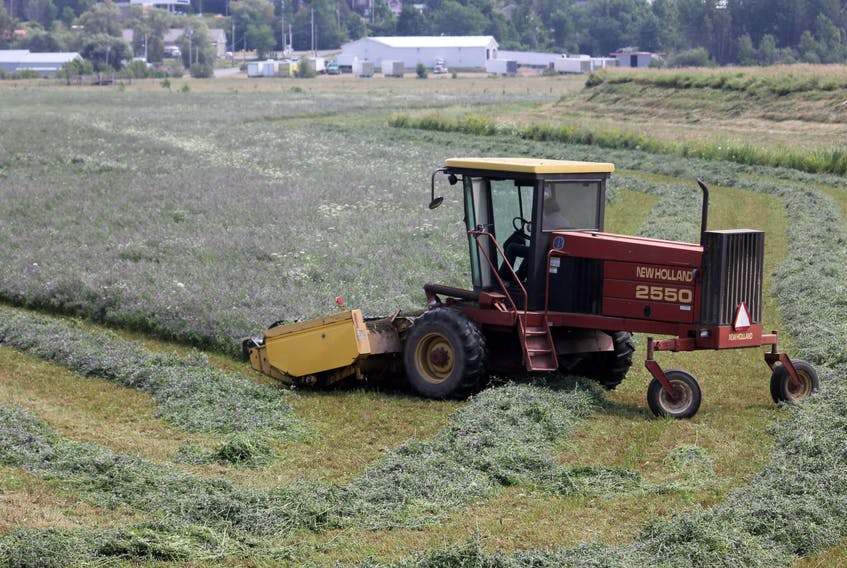 A farm worker mows a field in Port Williams, Kings County Tuesday afternoon.
