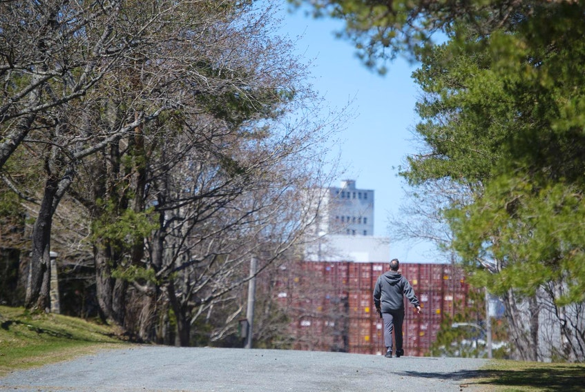 A pedestrian strolls through Point Pleasant Park on Wednesday afternoon. HRM plans to cut or trim around 80,000 trees within the park this summer. - Ryan Taplin