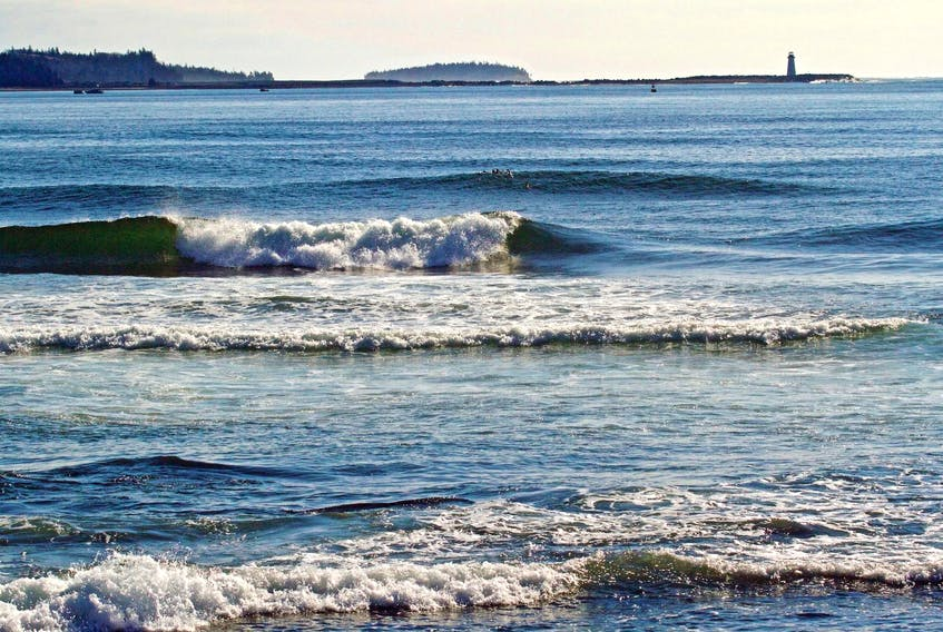 Waves roll onto the shore of Halifax Harbour. An international study led by Dalhousie researchers projects that unless rigorous action is taken on curbing greenhouse gas emissions, about 17 per cent of marine biomass will be lost by century's end. - File