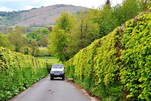 Driving the back roads (as here, in Dartmoor, England) yields surprises by the mile. - Cameron Hewitt