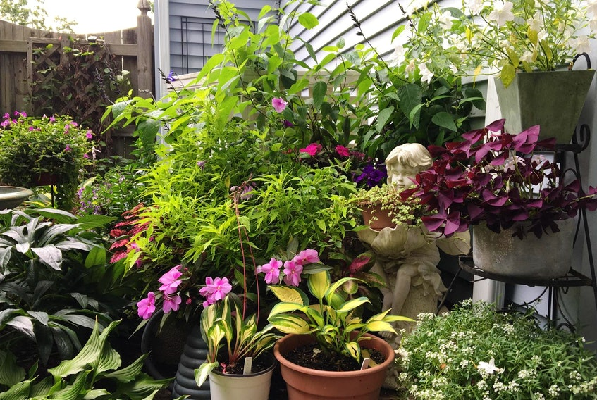 Group containers together to create a potted garden on a deck or patio.
