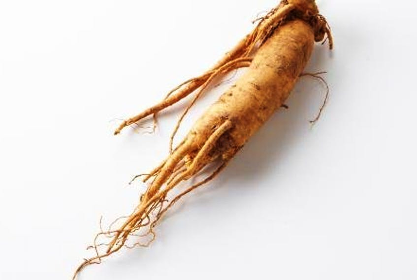 Korean ginseng was one of 20 natural product ingredients that National Research Council researchers analyzed for the project. - National Institute of Korean Language