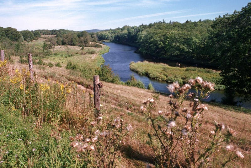 Halifax trio fined under COVID-19 rules for Annapolis Valley fishing trip