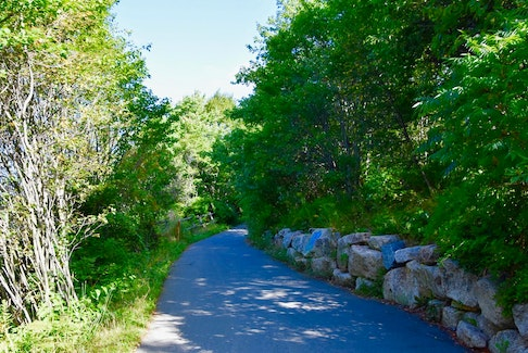 There's a beautiful stretch of the Dartmouth Harbourwalk where it feels like you're in the countryside. - Dale Dunlop