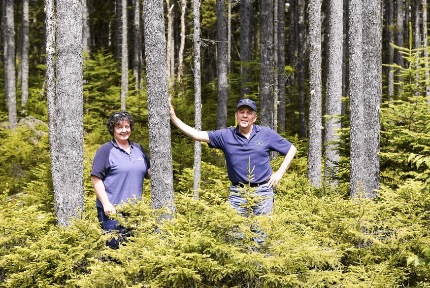 Pat and Peter Spicer stand in their Spencer's Island property, the home of Seven Gulches Forest Products. File