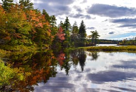 The Blue Mountain connector's fall colours. Stephen Glazier /