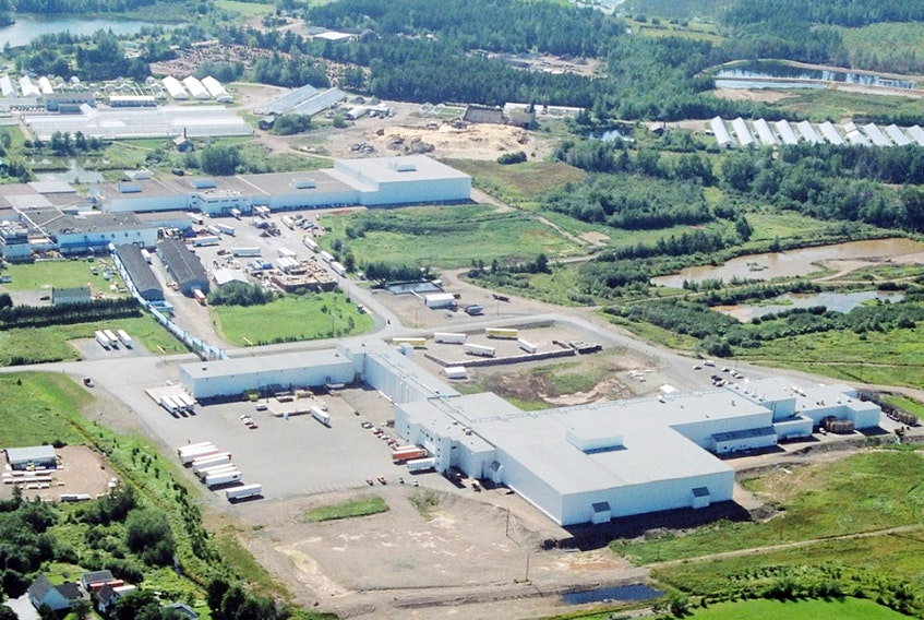 Oxford Frozen Foods has grown since its first processing plant opened 50 years ago. The company has expanded a couple of times including an $8.4-million expansion in 1998. - Oxford Frozen Foods photo