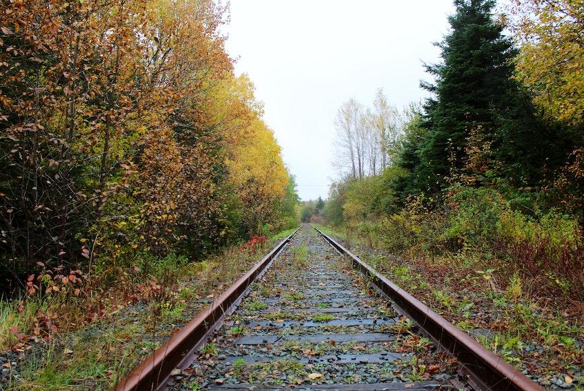 Cape Breton and Central Nova Scotia Railway near Balls Creek.