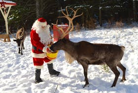 Santa Claus will make his way to Two Rivers Wildlife Park in Huntington from Thursday until Monday as part of the Two Rivers Winter Light-Up.