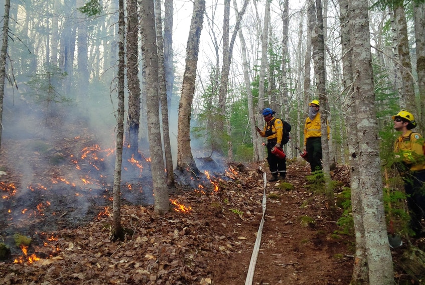A prescribed burn was tried this week in the Cape Breton Highlands National Park to spur growth of some forest trees. Firefighters are shown on Tuesday near the lower part of the prescribed fire area.