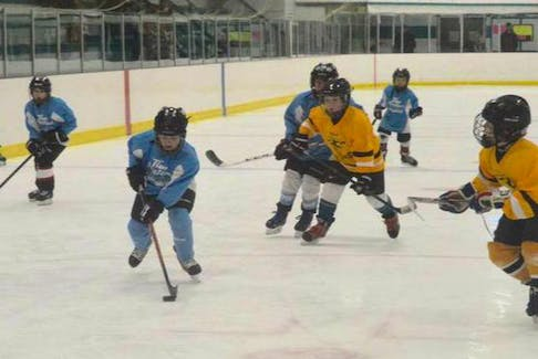 This file photo shows a game between the New Waterford Sharks playing a game against the Glace Bay Miners last year.