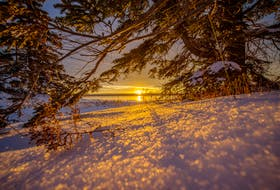 In this scene, a winter sunrise in Port Morien, I used the sparkling snow for foreground interests and framed the sun rising with the overhanging balsam fir. f11 1/160s ISO 100 @ 15mm. Contributed/kristynski.ca or info@kristynski.ca