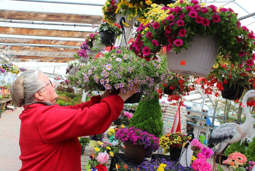 Flowers will be part of many Mother's Day celebrations this weekend in Cape Breton. At MacDonald Gardens in Sydney, Barbara Budgen is shown Friday preparing some of their Mother's Day arrangements which have proven popular.