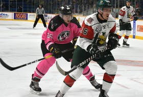 In this file photo, Egor Sokolov of the Cape Breton Screaming Eagles, left, chases Jake Ryczek of the Halifax Mooseheads during the team's annual Pink at the Rink game on Oct. 26 at Centre 200 in Sydney. Cape Breton and Halifax have been rivals in the Quebec Major Junior Hockey League since 1997. If all goes well, you will soon be able to sport either team's logo on your licence plate pretty soon.