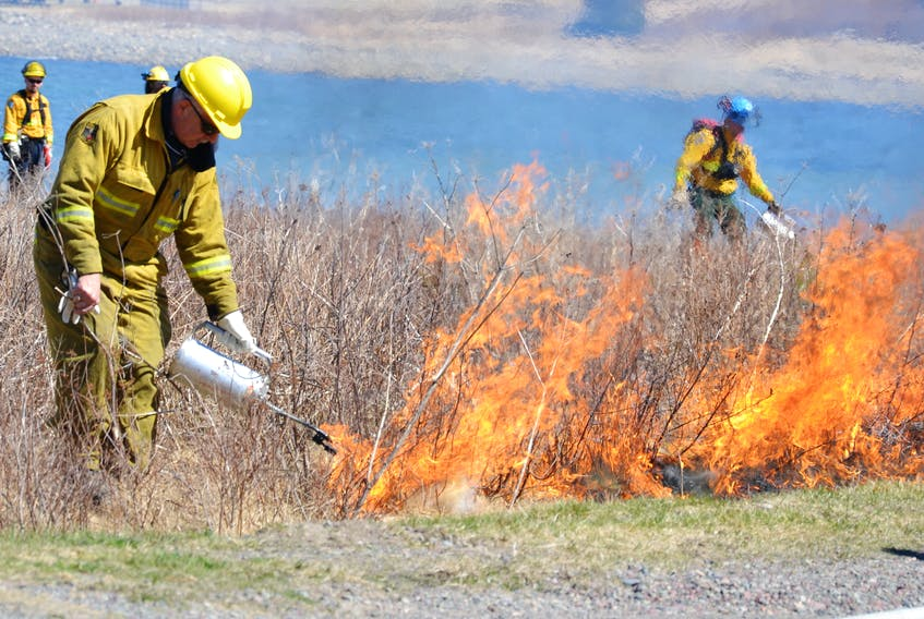 This file photo shows a Parks Canada employee taking part in a prescribed fire near the Fortress of Louisbourg National Historic Site in May 2015. A similar controlled is taking place at Warren Lake in Cape Breton Highlands National Park this week.