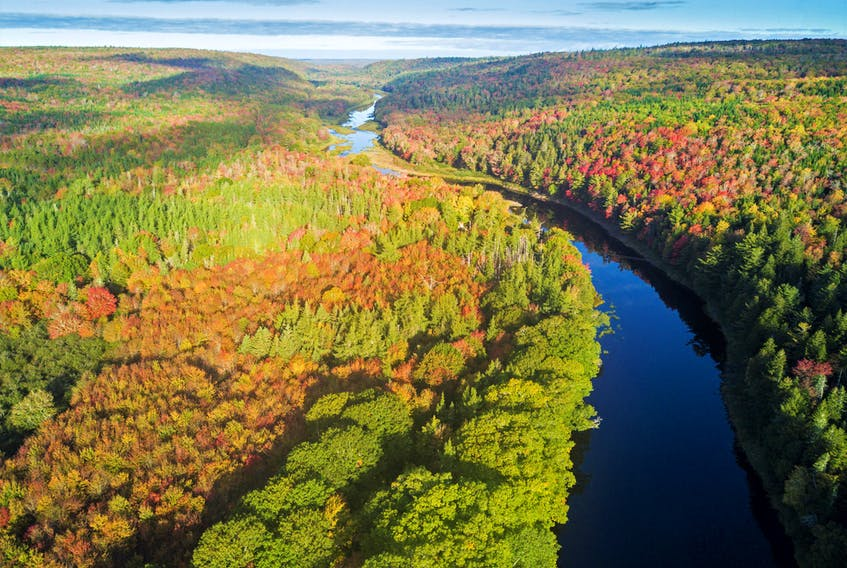 130 acres of land along the St. Mary's River was donated to the Nova Scotia Nature Trust by members of the Sobey family.