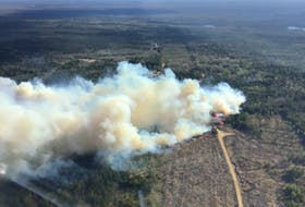 An aerial shot shows more than 20 hectares of land on fire in Chester Grant on Friday evening.