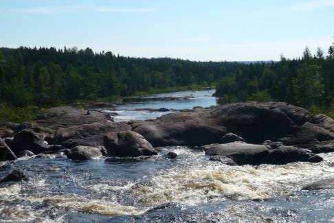 Parks Canada has announced its salmon season for Northwest River, within Terra Nova National Park, but 250 salmon have to pass through the counting fence first. If all is well during the first in-season review, July 5, a start date of July 8 will be issued.