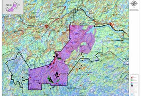 The shaded portion of the map represents the section of land the Miawpukek Mi'kamawey Mawi'omi are looking to obtain through the land transfer agreement it is seeking with the province of Newfoundland and Labrador.