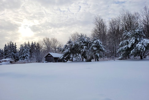 A winter wonderland. This was the scene Monday morning outside Salina Bertin's window in Lorne New Brunswick.  Mother Nature was playing favourites – the weekend storm whitened the landscape in some parts of Atlantic Canada, while others enjoyed a free carwash.