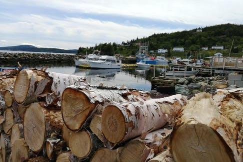 The firewood is neatly stacked; the clouds grow heavy on an overcast afternoon in Dildo, N.L.  There was not a ripple on the water when Gary Mitchell snapped this seasonal photo.  On a day like this one, the low cloud and high humidity would carry the sound of a whistle clear across the harbour.