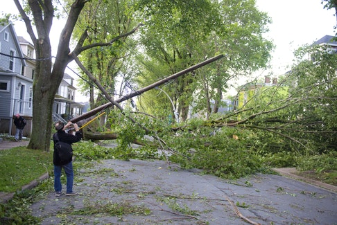 A neighbourhood residents takes a photo of some of the damage on Kline Street in Halifax on Sunday morning, Sept. 8, 2019 after high winds blew through from hurricane Dorian.