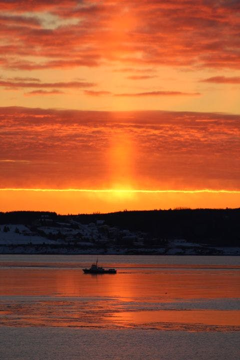 A beam of light from the rising sun cast a warm tangerine glow on a cold-looking Sydney Harbour.  Denise Clarkson's timing was perfect, and the photo is mesmerizing.