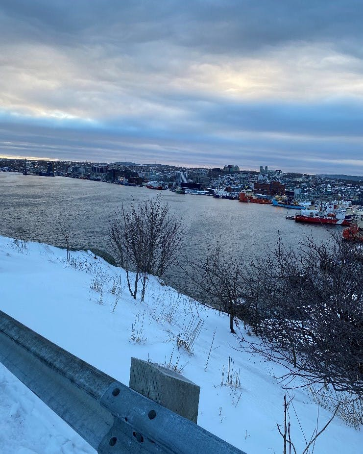 The St. John's Harbour is quite the chameleon; the season, the time of day and the elevation can change everything. This pretty photo of the Narrows at the entrance of St. John's Harbour offers a very interesting perspective.  Judy and Harold Sheppard were partway up Signal Hill when Judy took the photo at 4:44 pm on February 10th.