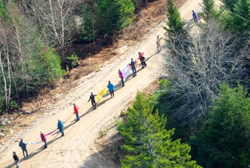 About 50 people joined in a blockade on a woods road near a logging operation in the New France area of Digby County on Sunday. SUSAN HUTCHINS