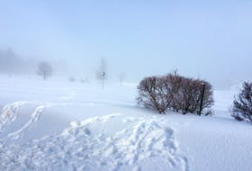 Advection fog enveloped Prince Edward Island as a warm front pulled milder air over the snow-covered landscape. - Rodney Hickey.
