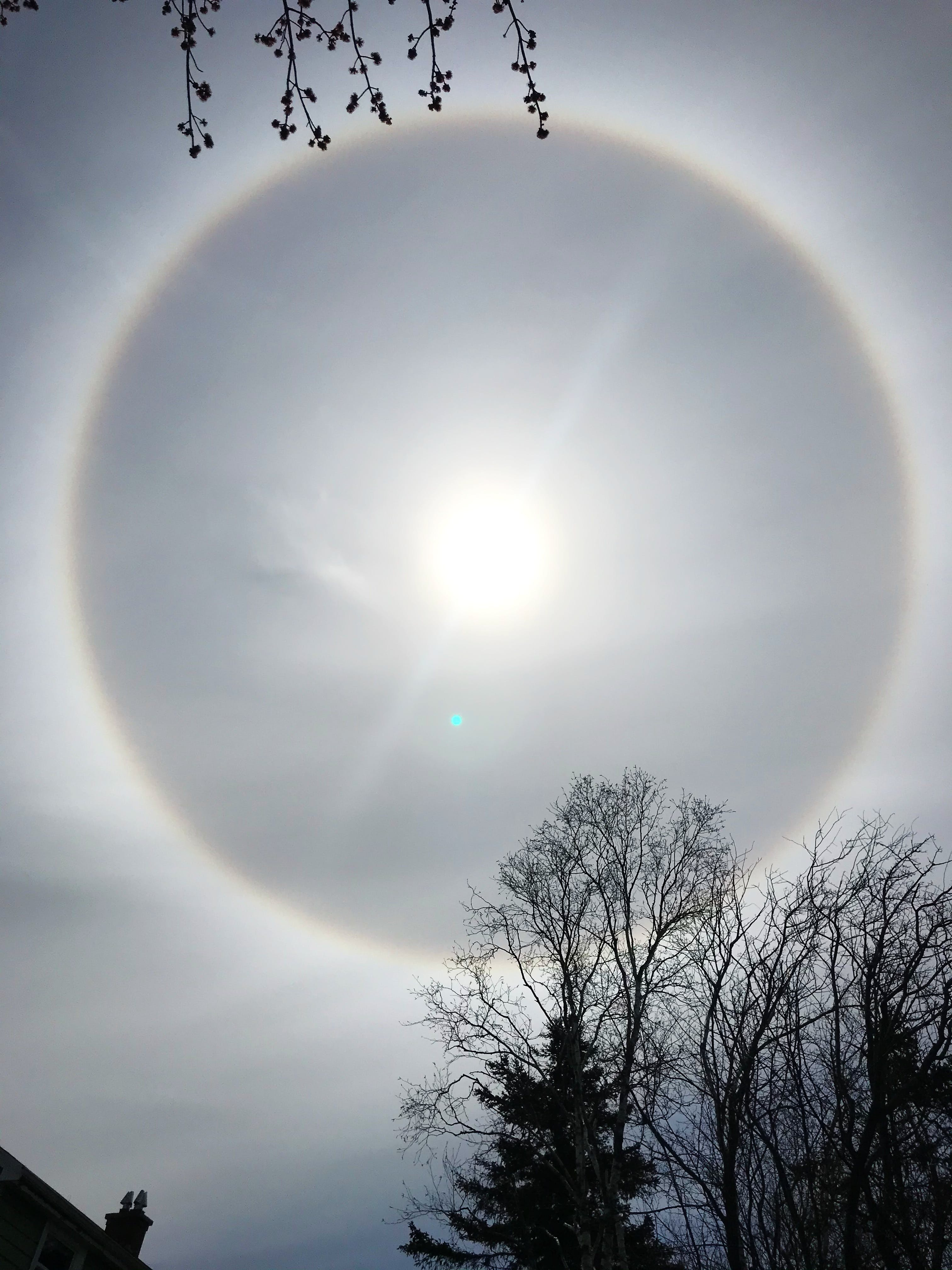 Look up… way up! Jack Devenney was sitting in his backyard in Dartmouth NS Sunday afternoon, enjoying the fine day, when he looked up and spotted the giant ring.  He snapped this gorgeous photo and says that the halo stayed visible for quite some time.