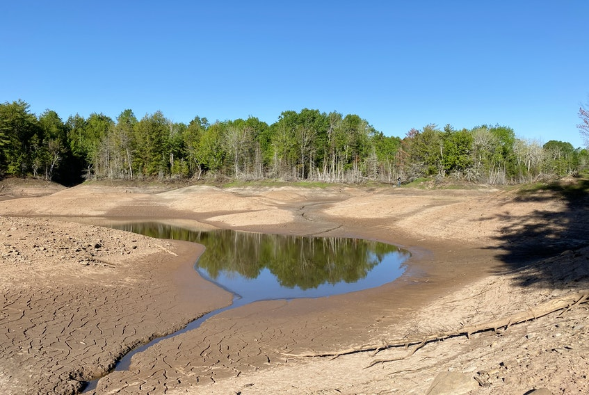 Slade Lake has been largely drained of its water this spring by the same geological formation responsible for the famous, and nearby, Oxford sinkhole. (CONTRIBUTED PHOTO)