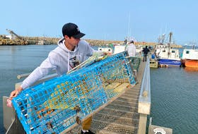 Carrying lobster traps down to the boats. TINA COMEAU PHOTO
