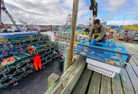 Lobster boats were loaded with traps and lobster traps were baited in southwestern NS on Nov. 28 in advance of the opening of the 2020-2021 commerical season. TINA COMEAU PHOTO