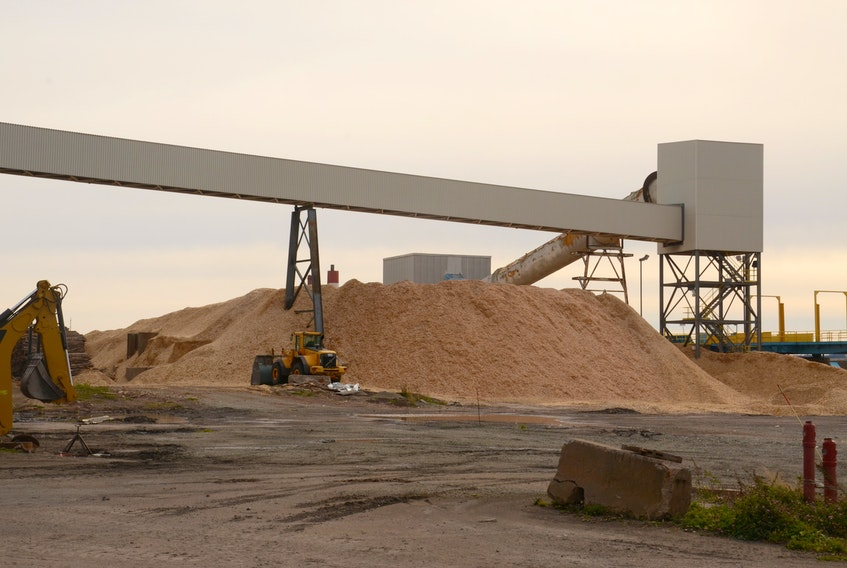 Chipped wood is piled up in preparation for being burned at Nova Scotia Power's biomass burning power generating station at Point Tupper in 2013.